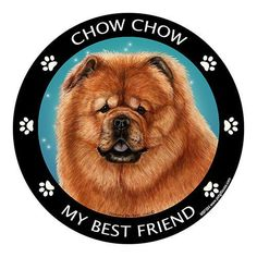 Show the world how much you love your pets with this magnet. Magnetic back allows you the freedom to easily reposition without damage or mess. - Easy on - Easy off. - Perfect for cars, trucks, RV's re