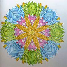 """#divokasavana #wildsavannah #adultcolouring #colourbook #milliemarotta #mandala…"