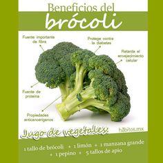 El brócoli tiene propiedades antioxidantes, ayuda a eliminar toxinas y combate los radicales libres. Perfecto para mantener una piel intacta durante el verano. Además, tiene vitamina B, A, y E y ácidos grasos Omega 3, que aporta elasticidad y tonicidad a la piel. ¿Completo, no?