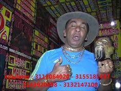 Chaman Llanero Ramiro Lopez 2013