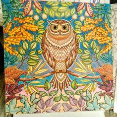 67 Best Secret Garden Pics I Colored Images On Pinterest