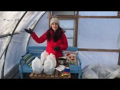 Winter sowing seeds - YouTube Seed Raising, Seeds, Make It Yourself, Winter, Youtube, Gardening, Winter Time, Lawn And Garden, Youtubers