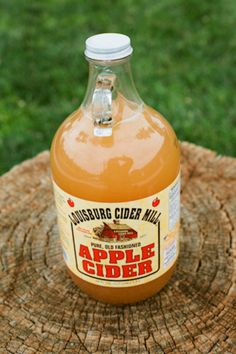 Apple Cider for a Fall wedding. Photography by mallorymorganphotography.com