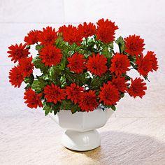 Kytice aster, červená   Magnet 3Pagen #magnet3pagen #magnet3pagen_cz #magnet3pagencz #3pagen #flowers #dekoration