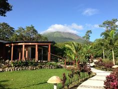 Book Hotel El Silencio del Campo, Costa Rica on TripAdvisor: See 1,467 traveler reviews, 1,381 candid photos, and great deals for Hotel El Silencio del Campo, ranked #6 of 61 hotels in Costa Rica and rated 5 of 5 at TripAdvisor.