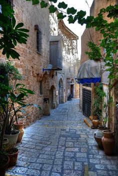 Alleyway in Jaffa by Dhani Barreñor
