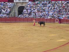 Après-midi de la tauromachie.-  Afternoon of bullfighting.-  Am Nachmittag des Stierkampfes.