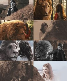 """"""" Aslan: """"If you were any braver, you'd be a lioness."""" Seeing Lucy with Aslan was one of my favorite aspects of the Narnia Films. Narnia Movies, Narnia 3, Cair Paravel, Lucy Pevensie, Prince Caspian, Cs Lewis, Chronicles Of Narnia, Lions, Snoopy"""