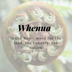 11 Beautiful Words That Will Make You Fall in Love With the Māori Language Big Words, Words To Use, Cool Words, Unique Words, Creative Words, Beautiful Words, Maori Words, Traditional Names, Foreign Words