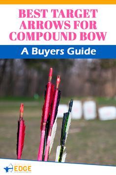 Best Target Arrows for Compound Bow: A Buyers Guide! Wooden hunting arrows, hunting arrow heads, best hunting arrows, how to make hunting arrows, hunting arrow tips, hunting arrow design, Arrow Hunting, archery hunting, archery hunting gear, archery hunting tips, arrows hunting guide, archery hunting tips, Archery target stand, archery range, archery hunting, archery quotes, archery equipment, archery women, archery backstop, horse archery, archery arrows hunting. #arrowshunting Bow Hunting Women, Bow Hunting Tips, Hunting Arrows, Deer Hunting Blinds, Archery Arrows, Hunting Guide, Archery Targets, Archery Gear, Archery Range