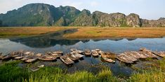 Ninh Binh - Van Long rezervace. #vietnam #cestovani #ninhbinh #vanlong #rezervace