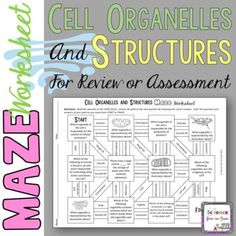 Cell Organelles and Structures Maze Worksheet for Review o Biology Lessons, Science Lessons, Teaching Science, Life Science, Teaching Ideas, Science Ideas, Science Cells, Medical Science, Science Biology