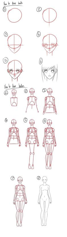 Tutorial - How to Draw Anime Heads/Female Bodies by Micky-K.deviantart.com on @deviantART: