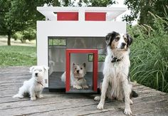 If you have money to spend, this dog house is sure to go well with your modern landscape.