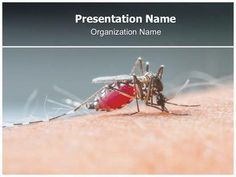 Chithra anupsc3 on pinterest check editabletemplatess sample malaria free powerpoint template toneelgroepblik Gallery