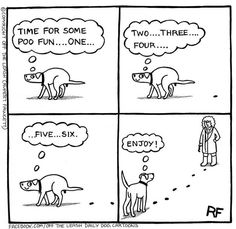 THIS is how my dog poops - little bombs all over the backyard (never in the same quadrant!)