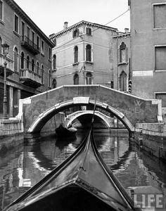 LIFE -- Italy