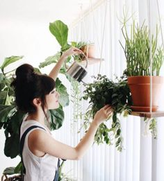 These Are the Plants to Keep in Your Bedroom for a Good Night's Sleep  on domino.com