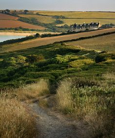 wanderthewood: Coast Path from Hawkers Cove to Stepper Point, Cornwall, England by CarolynEaton on Flickr