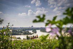Belgrad | Die Mischung macht's!