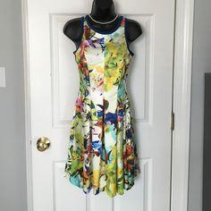 Nwt Parker Beautiful Dress