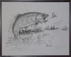 cutthroat trout drawing - Google Search