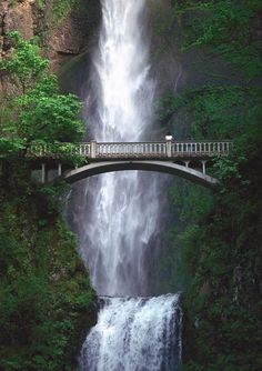 Waterfall in Portland Oregan Live your life by design.  Ask me how.  Join my facebook page for support, recipes, and tips to positive lifestyle changes. https://www.facebook.com/letsbefit43/?ref=aymt_homepage_panel