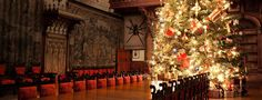 Vacations at America's Largest Home in Asheville, NC  Biltmore~ At Christmas  Nearly every room has a theme tree in this fabulous home!