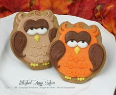 Autum owls