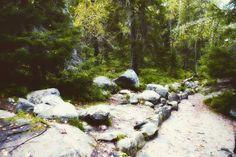 "ministry.of.apathy: ""#пейзаж #природа #море #осень #соловки #соловетскиеострова #холод #грусть #печаль #одиночество #landscape #nature #autumn #fall  #solovki  #solovethailand #evening #twilight #snow #town #sity #cold #sadnчess #loneliness #путешествие #прогулка #walk #journey"""