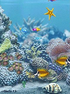 Explore amazing art and photography and share your own visual inspiration! Underwater Art, Underwater Creatures, Colorful Fish, Tropical Fish, Gif Animé, Animated Gif, Animation, Fish Gif, Fauna Marina
