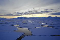 Does Antarctic sea ice growth negate climate change? Scientists say no   GarryRogers Nature Conservation