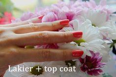 Lakier Eveline mini max + top coat Eveline