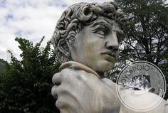 Uno dei più spettacolari capolavori di Telovendoio! Mezzo busto del David di Michelangelo gigante...Meditabondo e suggestivo!