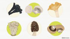 Everything you need to know about choosing, storing, cleaning and cooking everybody's favorite edible fungus, the mushroom.