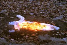Ana Mendieta - Alma silueta en fuego (Silueta de cenizas) 1975
