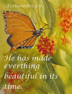 Sunday Stillness - Join the Sunday Stillness community with a Scripture and a picture. Let's spread the Word of God. Biblical Quotes, Spiritual Quotes, Bible Quotes, Word Of Faith, Word Of God, Christian Life, Christian Quotes, Ecclesiastes 3 11, Butterfly Quotes
