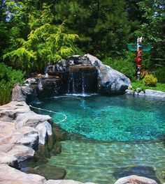 small natural design pool with evergreen landscape totem pole California.jpg (350×393)