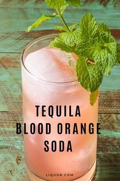 This tequila cocktail will be your new spring favorite. Perfect for Cinco de Mayo, the Tequila Blood Orange Soda is simple and perfect for parties. Mezcal Cocktails, Purple Cocktails, Summer Cocktails, Holiday Cocktails, Champagne Cocktail, Cocktail Drinks, Cocktail Recipes, Alcoholic Drinks, Drink Recipes