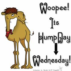 Woopee It's Hump Day Wednesday days days of the week good morning wednesday hump day graphic hump day camel happy wednesday good morning wednesday wednesday quote Wednesday Greetings, Wednesday Hump Day, Happy Wednesday Quotes, Good Morning Wednesday, Wednesday Humor, Wonderful Wednesday, Its Friday Quotes, Friday Humor, Happy Friday