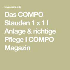 Das COMPO Stauden 1 x 1 I Anlage & richtige Pflege I COMPO Magazin