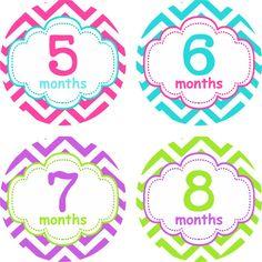 Mensual bebé niña pegatinas pegatinas de por LittleLillyBugDesign