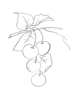 Pencil Art Drawings, Easy Drawings, Art Sketches, Fruit Painting, Fabric Painting, Hand Embroidery Patterns, Quilt Patterns, Coloring Books, Coloring Pages