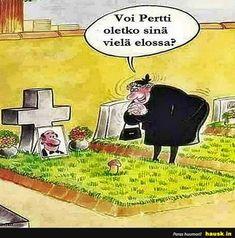 Voi Pertti... - HAUSK.in