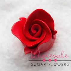 Largest Selection of Gumpaste Sugar Flowers and Royal Icing Decorations