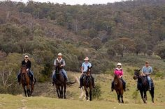 Image from http://madaboutsports.com.au/Images/Adventure-Sports/Land/Horse-Riding.jpg.