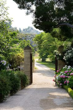 Designer Dominique La fourcade    One of Provence's best-known Country Garden Designers