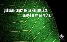 Quédate cerca de la naturaleza, jamás te va a fallar.