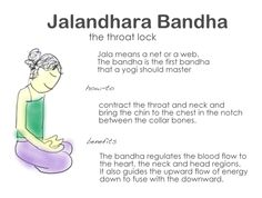 Compresses the sinuses on the main arteries of the neck and in doing so helps regulate the circulatory and respiratory systems. The pressure on the throat helps to balance the thyroid and metabolism. And if no one is looking at you at work, engage Jalandhara Bandha as an instant trigger for mental relaxation as well as stress and anger relief.