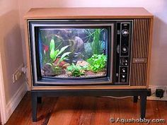 How to convert an old tv into a fish tank in 10 steps. fish tank ideas How to Convert an Old TV Into a Fish Tank Aquariums Super, Amazing Aquariums, Tanked Aquariums, Unique Fish Tanks, Cool Fish Tanks, Amazing Fish Tanks, Snake Tanks, Aquarium Design, Nature Aquarium